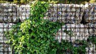 Recikliranje i ponovna upotreba materijala i konstrukcija postaju sve popularniji u arhitekturi kao alternative proizvodnji komponenata u građevinarstvu, tipično povezane s povećanom potrošnjom energije i visokim nivoom zagađivača ispuštenih u atmosferu. Glavna razlika između ove dvije metode je u tome što, dok prva koristi određenu količinu energije za obradu materijala […]